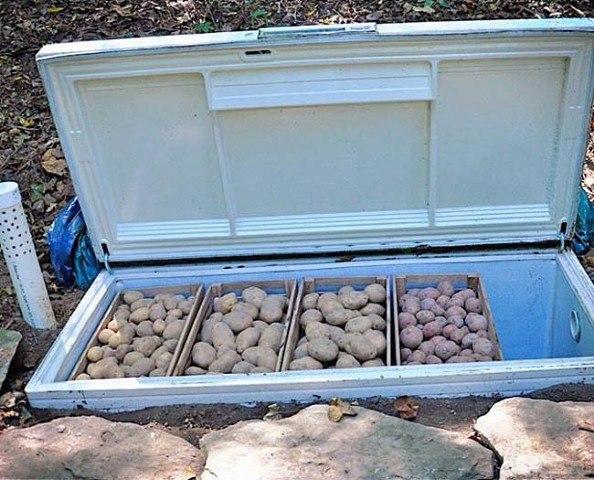 Новая жизнь старого холодильника, как Вам идея