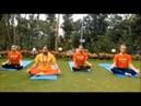 Osho Tapoban yoga suggestioni