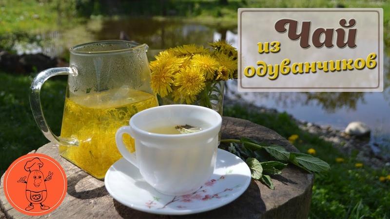 Чай из одуванчиков - как правильно приготовить цветки и заваривать чай рецепт, пропорции от Cookish