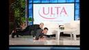 Justin Hartley Balances Ellen on His Back for Charity