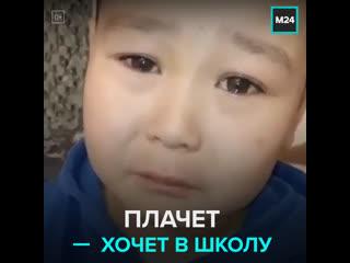Школьник плачет и просится в школу  Москва 24