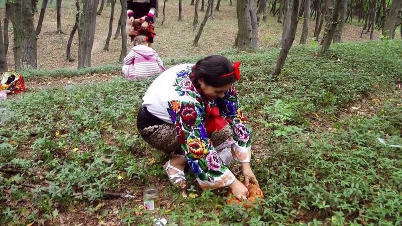 Барвiнок- українські весільні традиції.