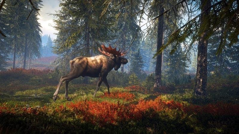 🔴 The Hunter Call of the Wild Освоение карты Выполнение квестов