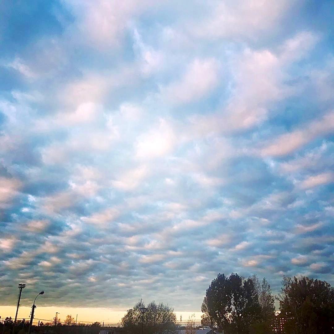 Чудесное утреннее небо в ленту    -