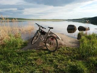 Велосипед повышает выносливость, улучшает сон и пищеварение, снижает стресс и вес, укрепляет нервную систему, иммунитет и кровообращение, улучшает работу легких! И это далеко не все полезные свойства этого вида транспорта!