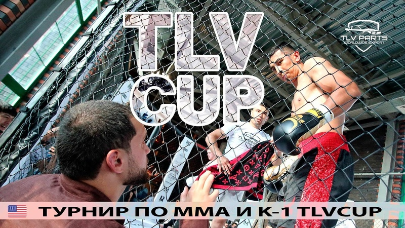 TLV CUP 2020 | Все бои с закрытого турнира по кикбоксингу и MMA