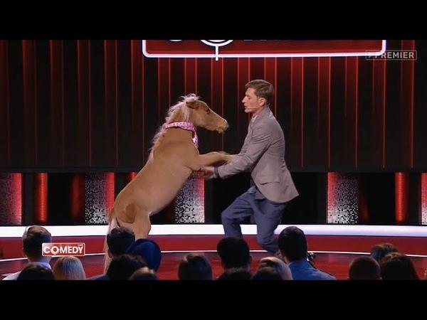 Павел Воля О собаках кошках и животных Comedy Club 2017