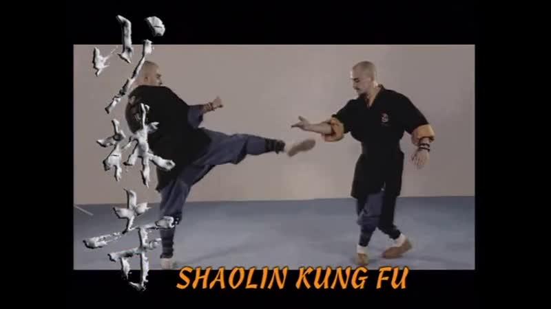 Enciclopedia Del Templo Shaolin Vol 7 Chan Wu Tang Tuei