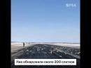 Общая стоимость груза, рассыпанного в аэропорту Якутска, составляет почти ₽22 млрд. Уже обнаружено около 200 слитков