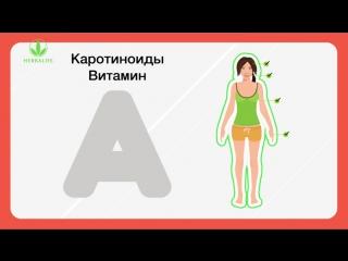 Сбалансированное питание. Антиоксиданты - природные источники продления молодости клеток
