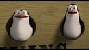 Пингвины меняют курс ★ Мадагаскар 2005