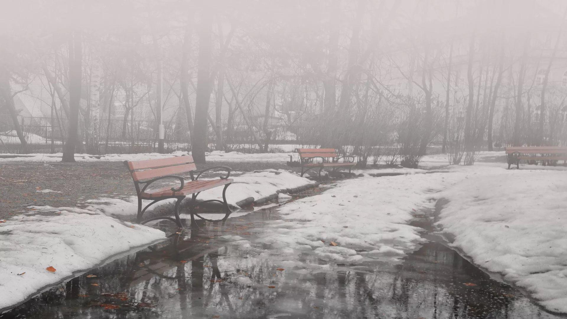Дождь с туманом ожидаются в Татарстане