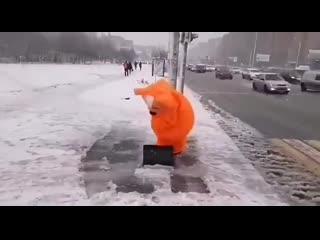 Рыжий ростовский кот рад зиме