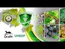 Вебінар «Інтегрований захист винограду від шкідників та хвороб»