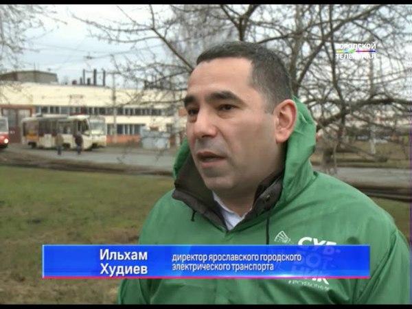 В Ярославле продолжается посадка новых деревьев