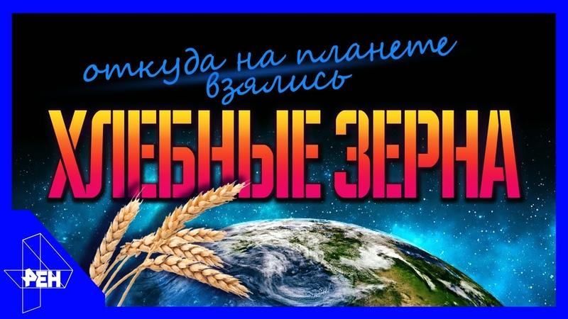 День космических историй Выпуск 3 04 11 2018