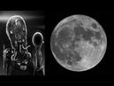 Внешние управители человечества - жизнь человека и смыслы бытия Л. Клыков