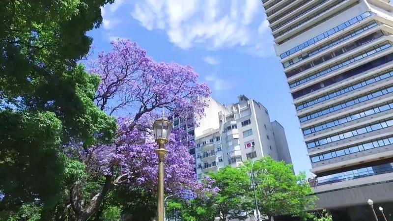 RUSA EN ARGENTINA, BUENOS AIRES l ex casa de Natalia Oreiro, Recoleta, Plaza de Mayo, Tigre