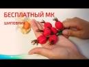 Бесплатный МК Шиповник