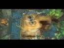 Kung-Fu Panda the Movie - MV featuring Rain