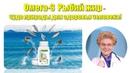 Омега-3 Nutrilite Рыбий жир - чудо природы для здоровья человека