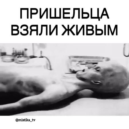 "Мистические Видео on Instagram: ""Одного пришельца взяли живым 😦 Жми два раза на экран ❤  Подпишись на @zabrosili_mesto ➖➖➖➖➖➖➖➖➖➖➖➖"""
