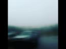Чудо природы 2018 лето Тобольск Тюменская область