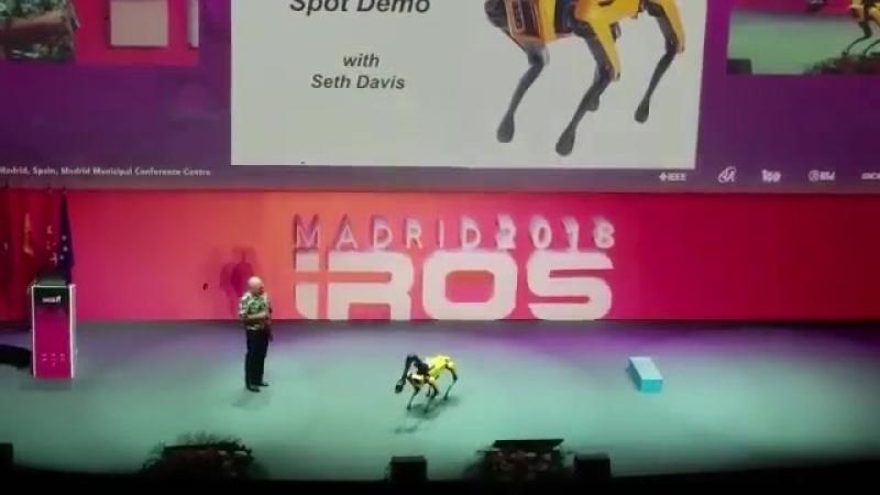 Boston dynamics IROS 2018 2