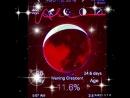 Moon 🌙 🌚