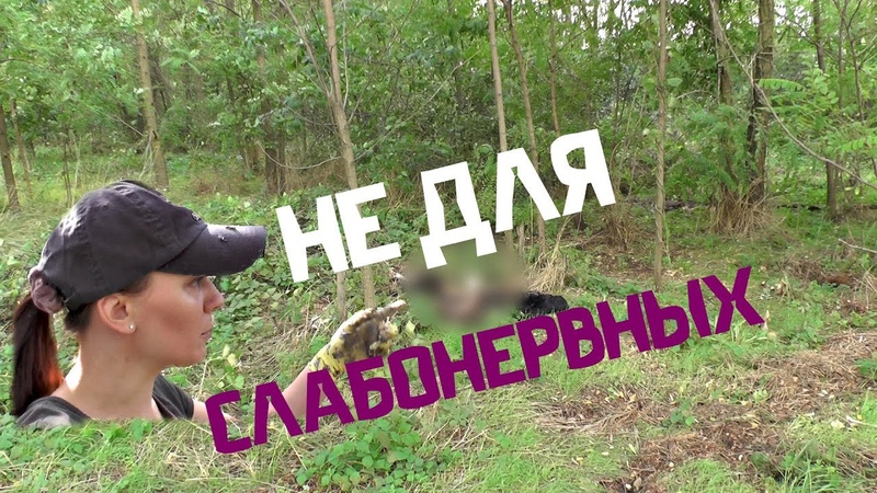 Искала ХРАМ, а НАШЛА местами видео не для слабонервных, приятного просмотра)