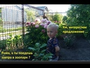 How kid Roman was in the Samara zoo. Very lovely video/ Рома в самарском зоопарке