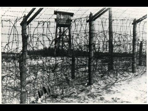 Концлагерь немецких и японских военнопленных Большой Бор.Национальный парк Нижняя Кама.Тарловка.