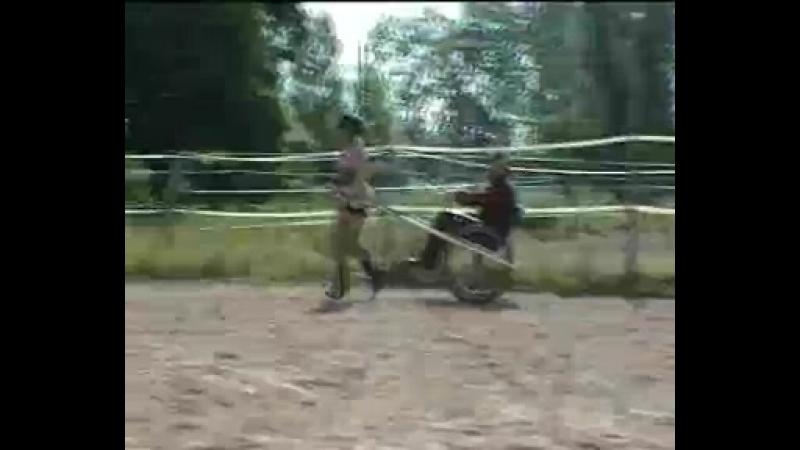 Ponygirl pulling cart 1c
