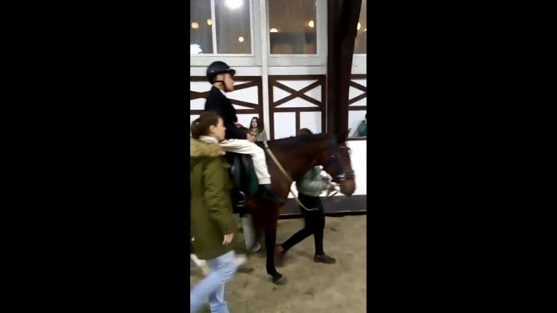 13 Всероссийский фестиваль конного спорта Золотая осень 3