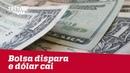 Bolsa dispara e dólar cai após pesquisa Ibope