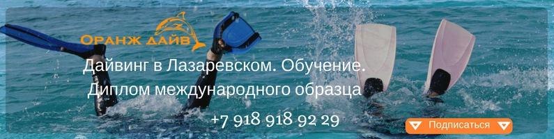 https://sun1-15.userapi.com/c834300/v834300816/10a79c/sf_EqcKThtA.jpg