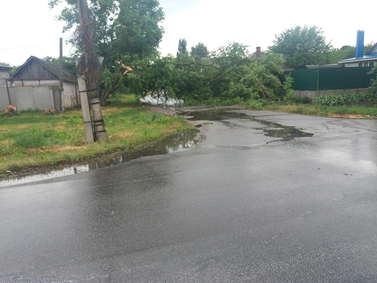 Ураган в Боброве 24 июня 2018 (фото и видео)