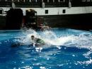 Дельфинарий в Архипо Осиповке 12.09.2011