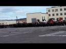 61-я отдельная Киркенесская Краснознаменная бригада морской пехоты Краснознаменного Северного флота.