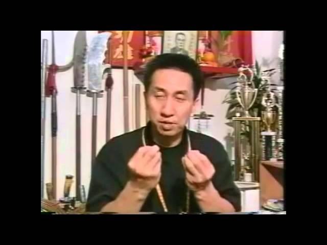 Shaolin Black Tiger Kung Fu