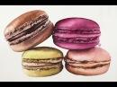 Realistic Macaroons in Watercolors Painting Tutorial