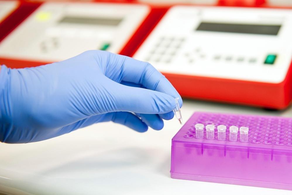 Бактериальные физиологи могут проводить генетические исследования бактериальных культур.