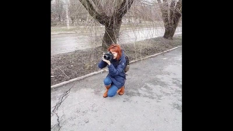 Когда зима уходит, а весна вступает в свои права, большинство людей видят природу бледной, скучной,
