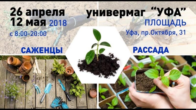 Ярмарка саженцев и посадочного материала Загородная жизнь.
