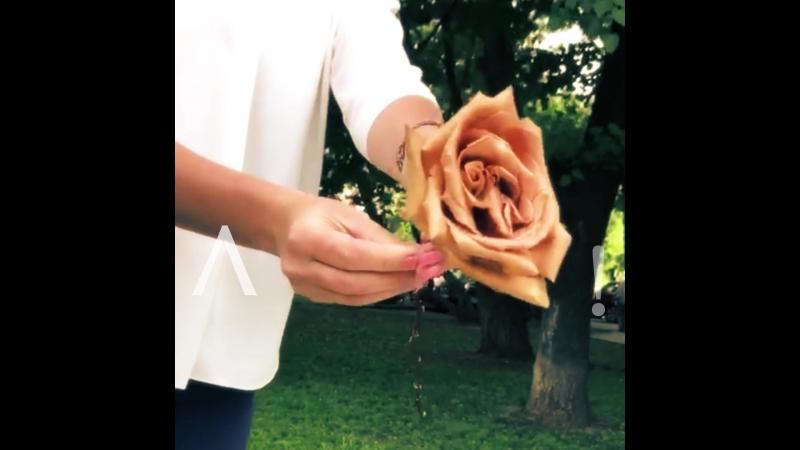 Кофейные розы от Самсон букет!