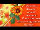 ✿✿✿ДОРОГОЙ ИРИШКЕ, С ДНЁМ РОЖДЕНИЯ!✿✿✿