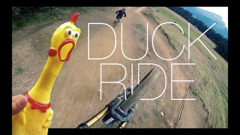VTT DH : Morzine / Ride avec un poulet !