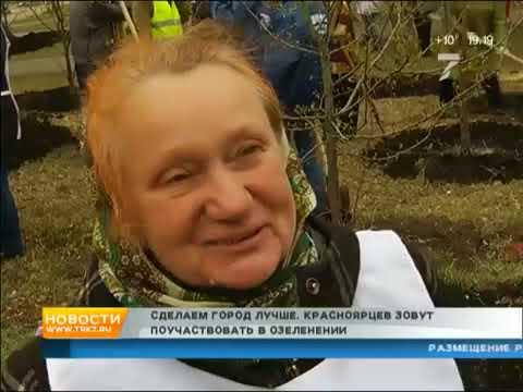 Десятки жителей Солнечного вышли высаживать деревья 7 Канал