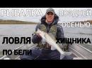Рыбалка поздней осенью. Ловля судака и щуки по бели. Поклевки в кадре - Рыбалка со stigan'ом