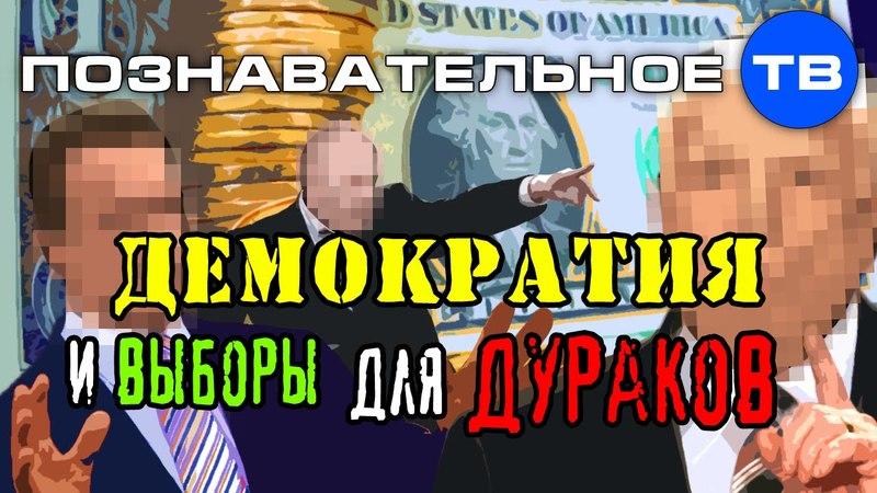 Демократия и выборы для дураков (Познавательное ТВ, Артём Войтенков)